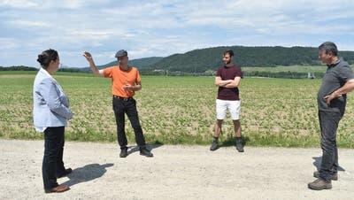 Sie diskutierten in Rheinklingen über die Biodiversität in der Landwirtschaft, von links: Regierungsrätin Carmen Haag, Biobauer Peter Schweizer, FiBL-Projektleiter David Vetterli und Biobauer Daniel Vetterli. (Bild: Thomas Güntert)