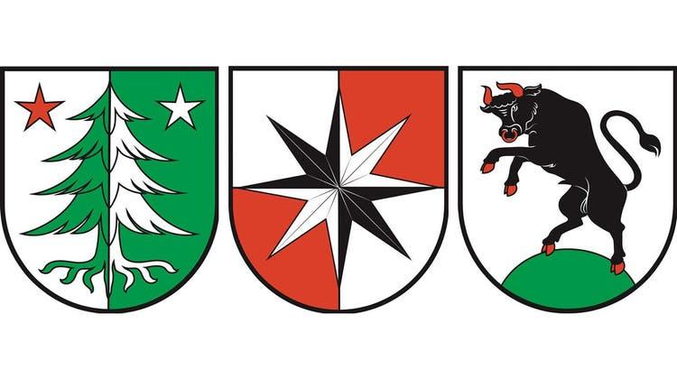 Diese drei Entwürfe standen in der Umfrage zur Diskussion: die Rottanne, der achtstrahlige Stern und der Stierenberg. (zvg/AZ)