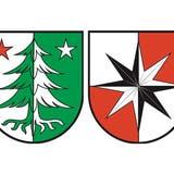 Diese drei Entwürfe stehen zur Diskussion: die Fichte oder Rottanne, der achtstrahlige Stern und der Stierenberg. (zvg/AZ)