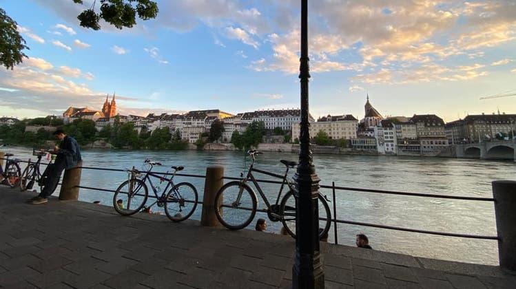 Tiere, Blumen, strahlende Sonne:Die schönsten Leserfotos der letzten Tage aus der Region Basel