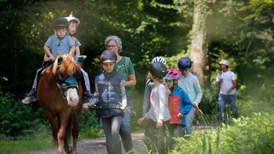 Das Pony-Reiten ist stets ein sehr gut besuchter Kurs des Ferienpass Amriswil. (Symbolbild: Stefan Kaiser (zz)/Zuger Zeitung)