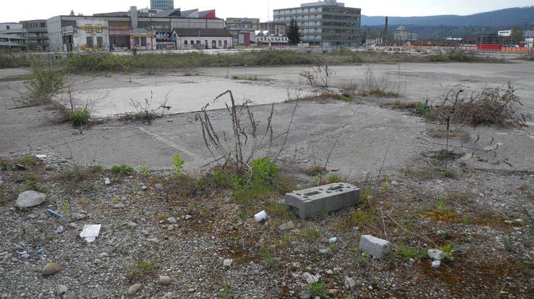 Auf diesem Grundstück soll das neue Stadion des FC Aarau entstehen. (Daniel Vizentini)