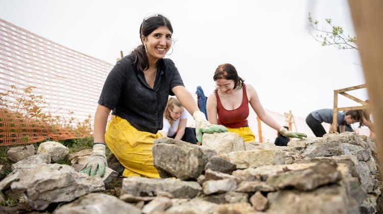 Lin Kaldian (links) aus Israel und Irina Mose aus Biel beimTrockensteinmauerbau auf dem Grenchenberg. (Michel Lüthi)