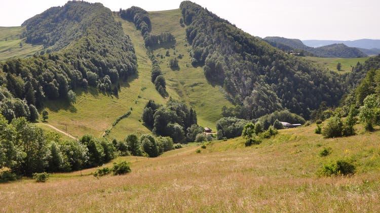 Blick von der Wasserfallenweid zum Vogelberg und Passwang. In diesem Gebiet findet die Themenwanderung vom 19. Juni statt. (bz-Archiv)