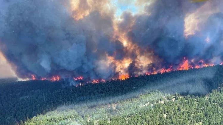 In Kanada wüten Waldbrände - Hitze-Gewitter drohen die Situation noch zu verschlimmern. (Bild: BC Wildfire Service)