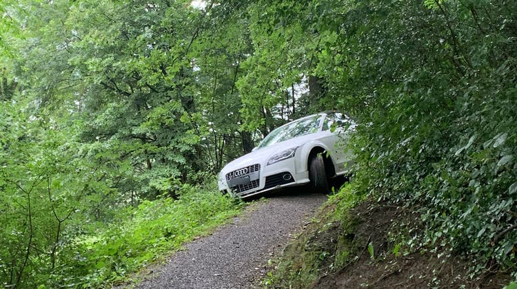 Das Auto ist irrtümlich auf einenWanderweg gelenkt worden. (Bild: Liechtensteinische Landespolizei)