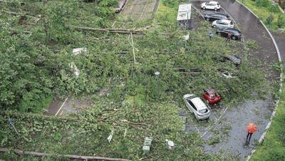 Umgestürzte Bäume und abgebrochene Äste auf dem Käferberg in Zürich beschädigen zahlreiche Autos. (Bild: Keystone)
