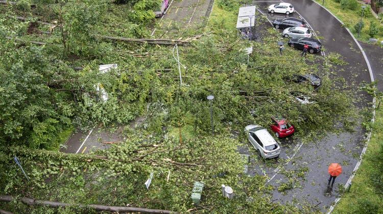 Die Aufräumarbeiten nach dem Sturm werden in Zürich bis weit in den Herbst dauern. (Keystone)