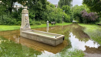 Das Hochwasser hinterlässt vielerorts Spuren: Die Oberengstringer Hardwiese neben dem Fussballplatz Brunewiis ist jetzt ein Weiher, der Spazierweg liegt unter den Wassermassen. (David Egger / Limmattaler Zeitung)