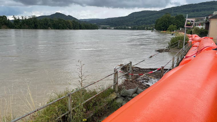 In Wallbach haben die Beaver-Schläuche am Rheinufer erneut ihren Zweck erfüllt. War es das letzte Mal, dass sie dort auslagen? (Nadine Böni (14. Juli 2021))