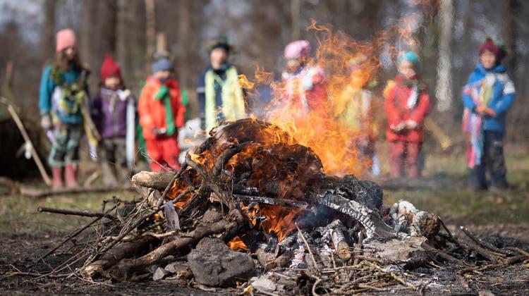 Kindergärtler beobachten ein Waldfeuer. (Bild: Arthur Gamsa)