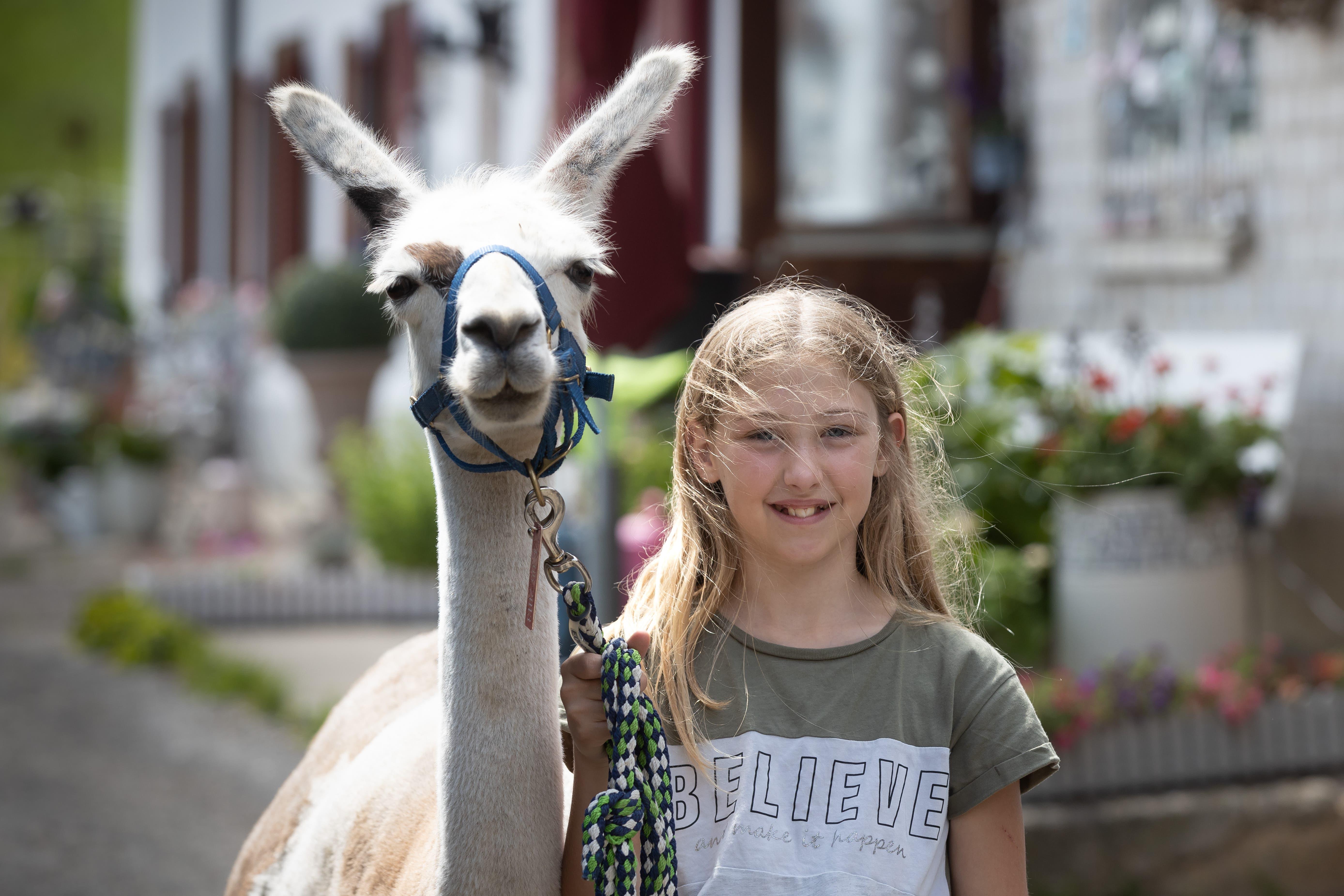 Jael, die Nichte von Christoph Kohler mit ihrem Lama Nuri.