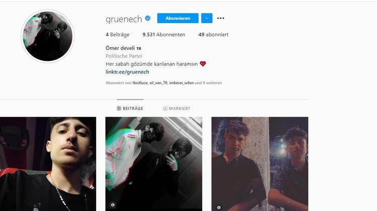 So präsentiert sich der Instagram-Aufritt der Grünen am Mittwochmorgen. (Screenshot)