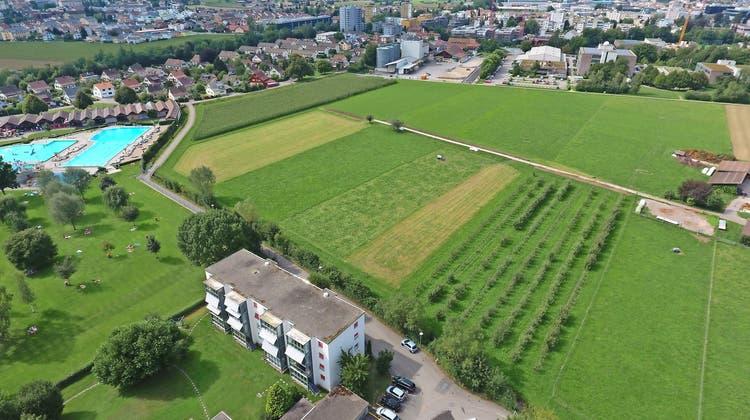 Der Stadtrat Zofingen wies den Initianten das Gebiet hinter dem BZZ (obere Bildmitte) bis zur Badi (links) für eine konkretere Planung zu. (Andi Leemann, Archiv)