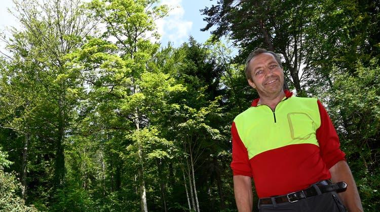 Revierförster Patrik Mosimann vor einer geschädigten Buche bei der Holzerhütte. (Oliver Menge)