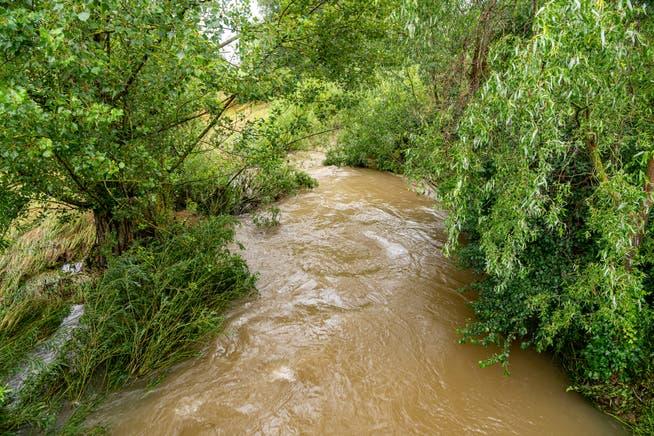 Unwetter streifte Aargau nur knapp, am meisten Regen im ...