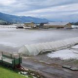 InBenkenSG ähnelte der am Sonntag gefallene Hagel einer Schneedecke. (Bild: BRK News)