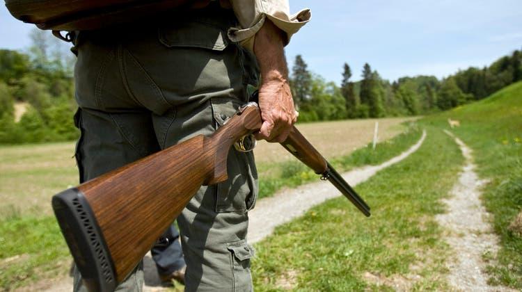 Knatsch zwischen Jägern und Jagdverwaltung in Innerrhoden: DemJagdaufseher wurde unter anderem Machtmissbrauch vorgeworfen. (Bild: Ennio Leanza/ KEYSTONE)