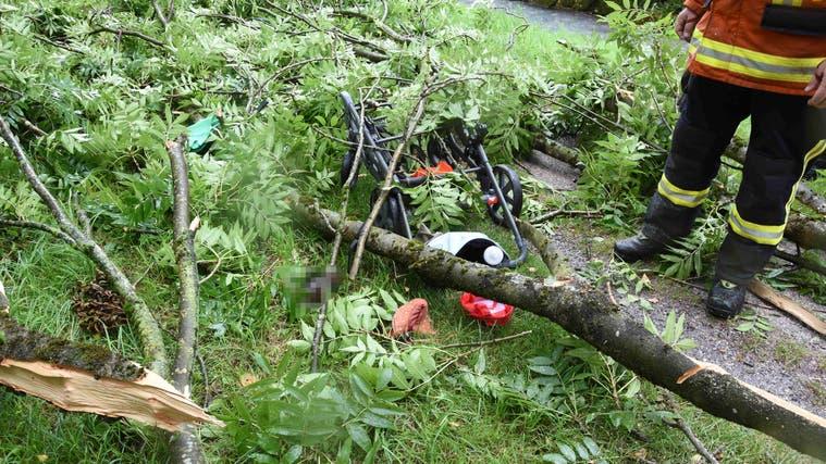 Die Äste brachen wegen einer plötzlichen, starken Sturmböe ab und fielen auf die Fussgängergruppe. (Bilder: Kapo SG)
