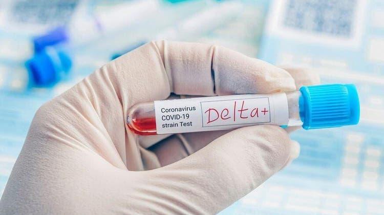 Positive Blutprobe mit der Delta-Variante des Coronavirus. Diese Variante hat sich rasant verbreitet und dominiert mittlerweile auch in der Schweiz. (shutterstock)
