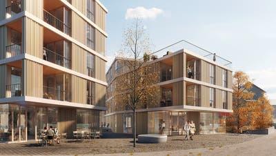 Zwei neue Gebäude an der St. Bernhardstrasse. (Visualisierung: zvg)
