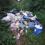 Grosse Mengen Abfall im Waldgebiet «Zeierfeld» illegal entsorgt
