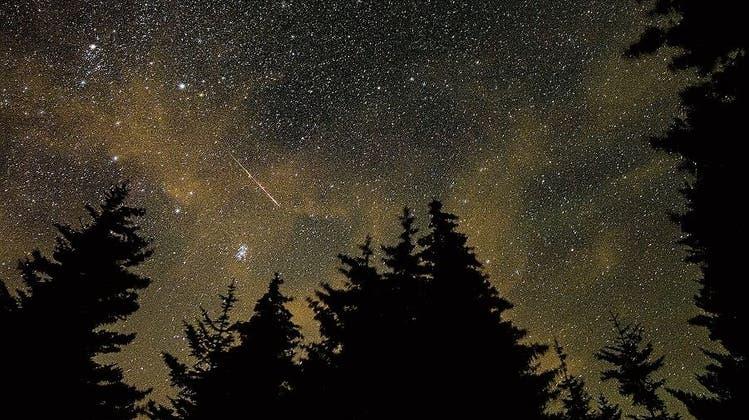 Ein Spektakel am Nachthimmel: Die feurigen Tränen von Laurentius – jetzt ist die beste Gelegenheit für geheime Wünsche