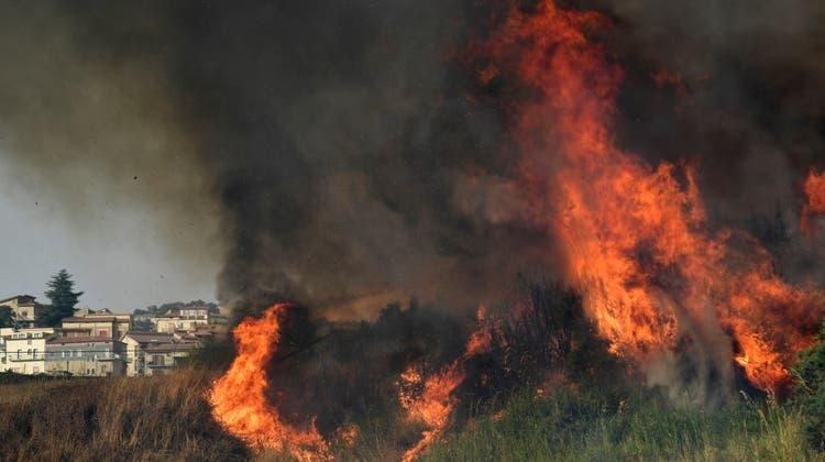 Ein verbrannter Hügel beim DorfAgriovotano auf der griechischen Insel Evia nördlich von Athen. (Keystone)