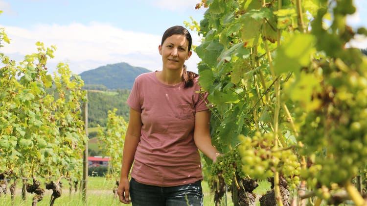 Rahel Buchmann, Inhaberin von Buchmann Weine in Wittnau, hoff auf eine sonnige Witterung bis zum Start der Wümmet. (Dennis Kalt / Aargauer Zeitung)