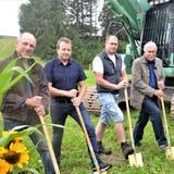 Godi Thönen(2. v. l.) nimmt mit Mitgliedern der Käsereigenossenschaft Wängi den Spatenstich vor: Werner Ammann, Beat Höpli, Hansjörg Walter und Markus Koller (Präsident). (Bild: Isabelle Schwander)