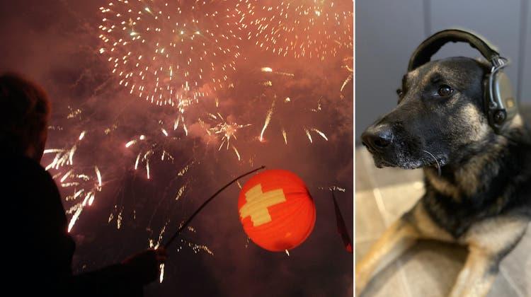 Der Nationalfeiertag wurde mit Feuerwerk begangen. (Archivbild: Keystone)
