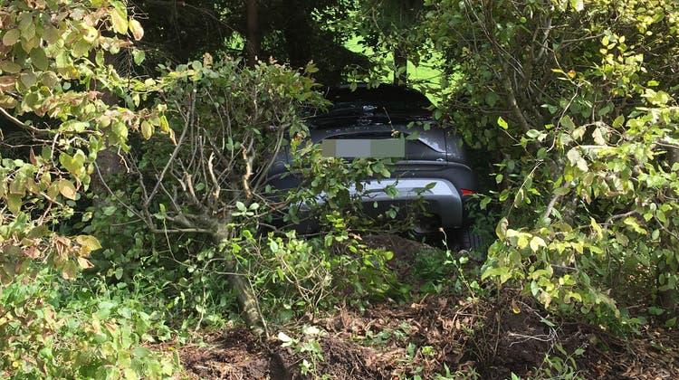 Die Autofahrerin fuhr einen Abhang hinunter. (Kapo AG)