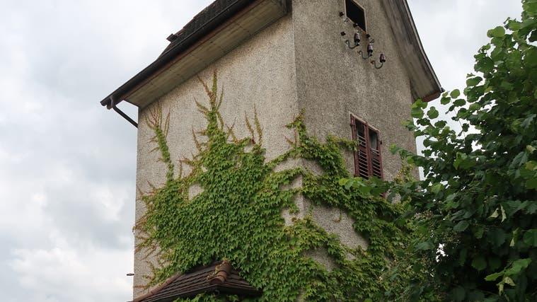Aus dem Trafohäuschen an der Hofmattstrasse in Beinwil wirdder erste Aargauer Artenschutzturm gebaut. (zvg)