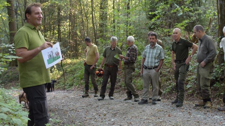 Gemeinsam für den Wald: Wie Förster und Jäger im Aargau voneinander profitieren