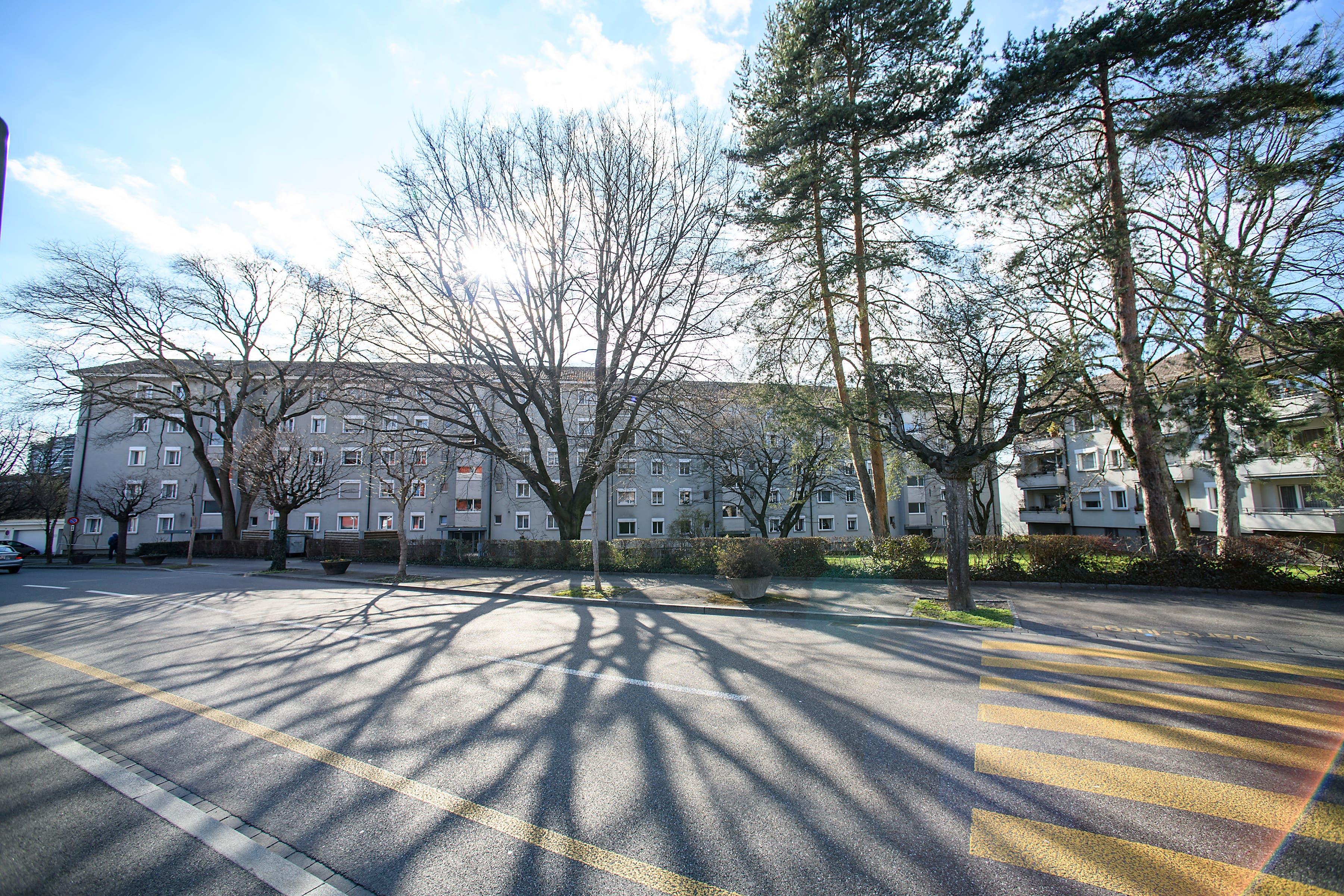 Die Bauten im Besitz der Anlagestiftung der Credit Suisse stammen aus dem Jahre 1957. Bewohnt werden sie von älteren Menschen, teilweise schon seit dem Baujahr.
