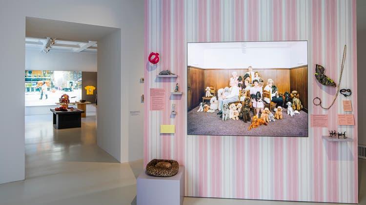 Es geht mit dem Thema Nähe los: Die Ausstellung «tierisch!» im Museum der Kulturen Basel zeigt, dass es keine Kultur ohne Tiere gibt. (Omar Lemke/Museum der Kulturen Basel)