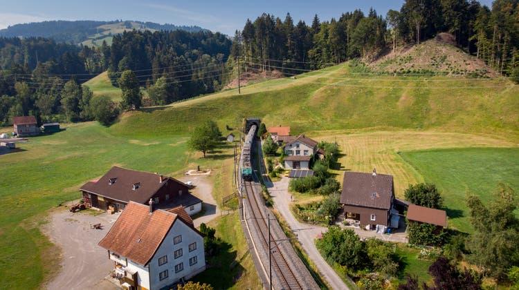Dank des Schienenausbaus zwischen Schmerikon und Uznach verbessert sich die Verbindung zwischen St.Gallen und Rapperswil durch den Rickentunnel. (Bild: Benjamin Manser)