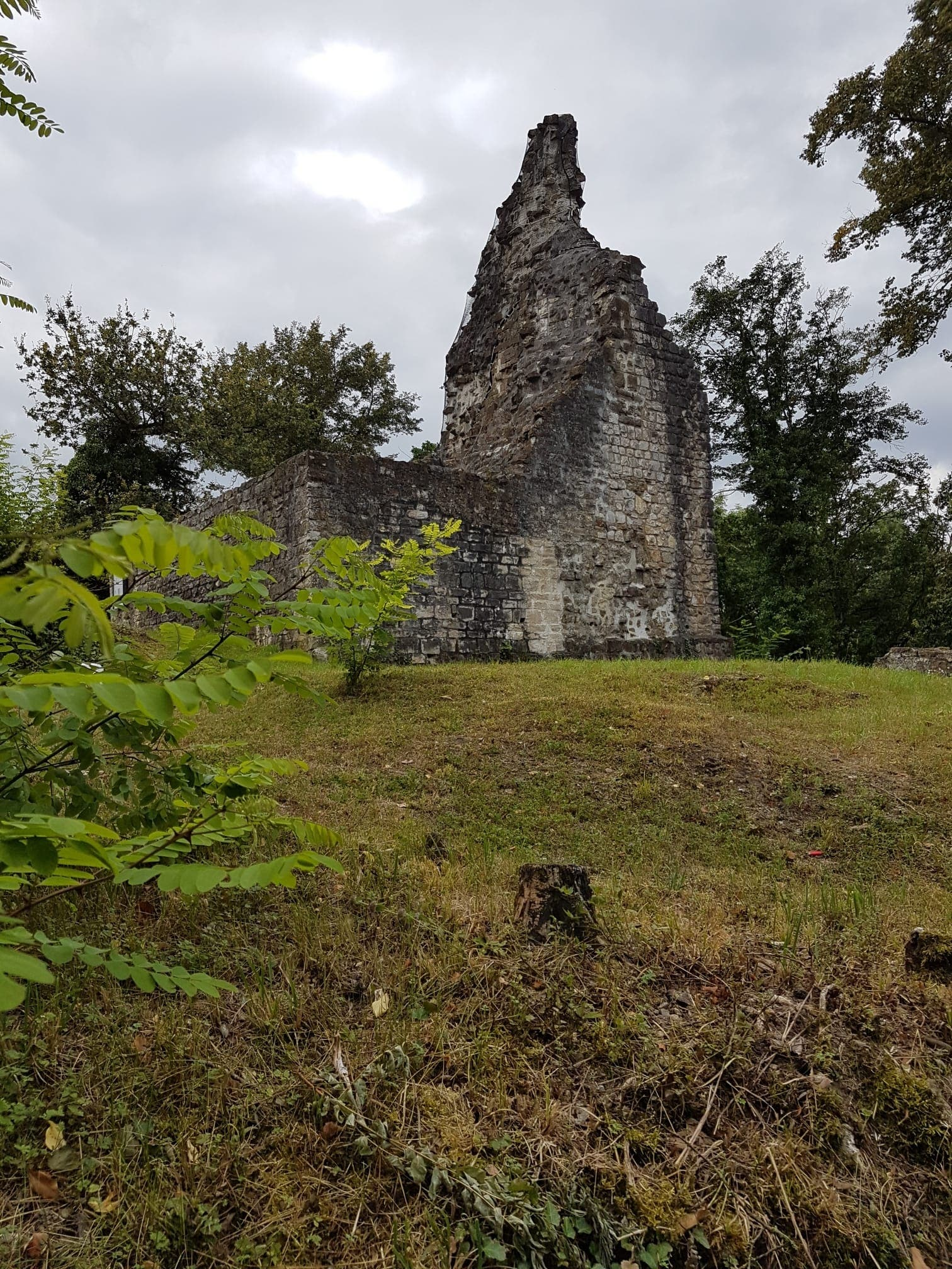 Die Ruine in Tegerfelden.