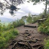 Eine schmale Holzbrücke verläuft hinter der Talstation über die Dornbirner Ach. (Bild: Saskia Ellinger)