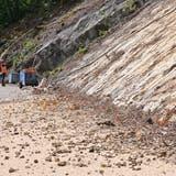 Die Steine sind weggeräumt, die Binzstrasse ist wieder befahrbar. (Bruno Kissling)