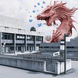 China-Kritik auf Twitter kostet HSG-Doktoranden den Abschluss