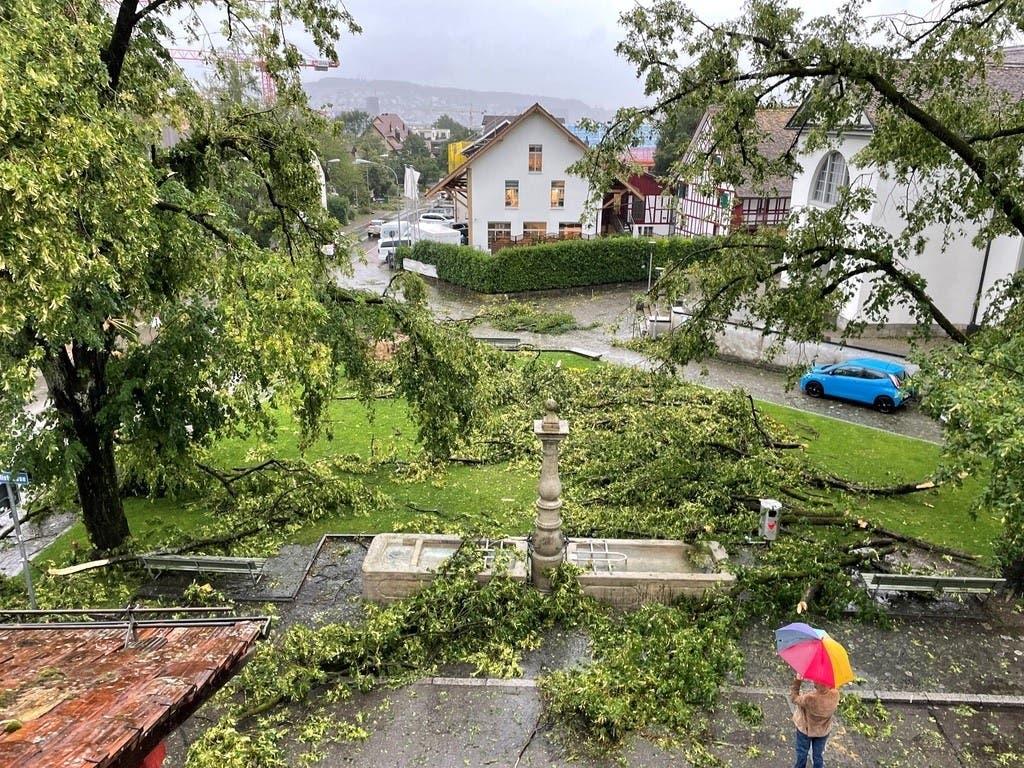 Sturm Bernd wütete Mitte Juli in Albisrieden.