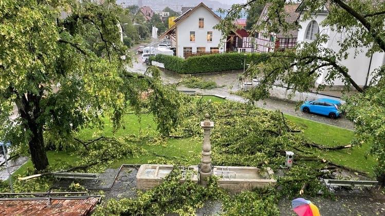 Sturm Bernd wütete Mitte Juli in Albisrieden. (zVg)