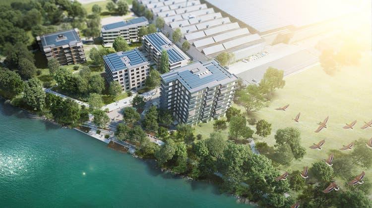 Riverside mit den Wohnhäusern der ersten Bauetappe. (Urs Byland)