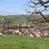 In Wölflinswil wird am Samstag der Gemeinderat neu gewählt. (Dennis Kalt / Aargauer Zeitung)