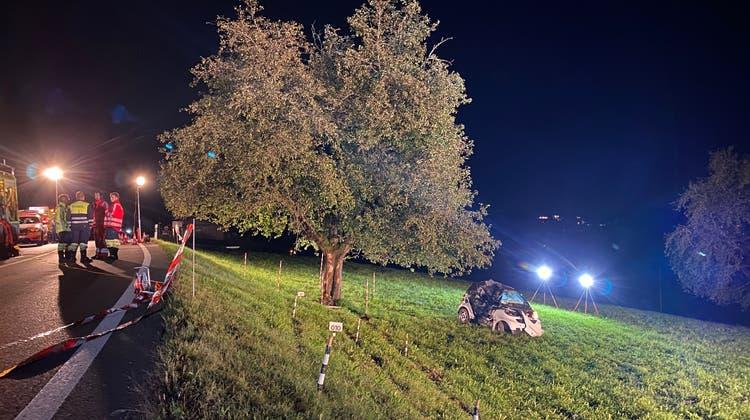 Der 46-Jährige Fahrer kam bei einer Linkskurve von der Strasse ab. (Kantonspolizei Zürich)