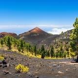 Friedlich wirkt sie, die Vulkangebirgskette Cumbre Vieja auf der kanarischen Insel La Palma. Seismologen warnen jedoch: Ein Ausbruch könnte kurz bevorstehen. (Getty)