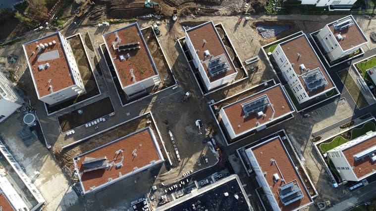15 Wohnblöcke wurden an der Steinengasse errichtet. Ein Anwohner findet, dass die vorgeschriebene Grünflächenziffer der Grundstücke nicht eingehalten wurde. (Bruno Kissling (Archiv))