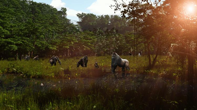 Das Projekt Kongo mit Gorillas und Okapis kann ab 2029 bestaunt werden. Es entsteht oberhalb der heutigen Lewa-Savanne auf bisher unbebauter Fläche. (Zoo Zürich, Region Five Media)