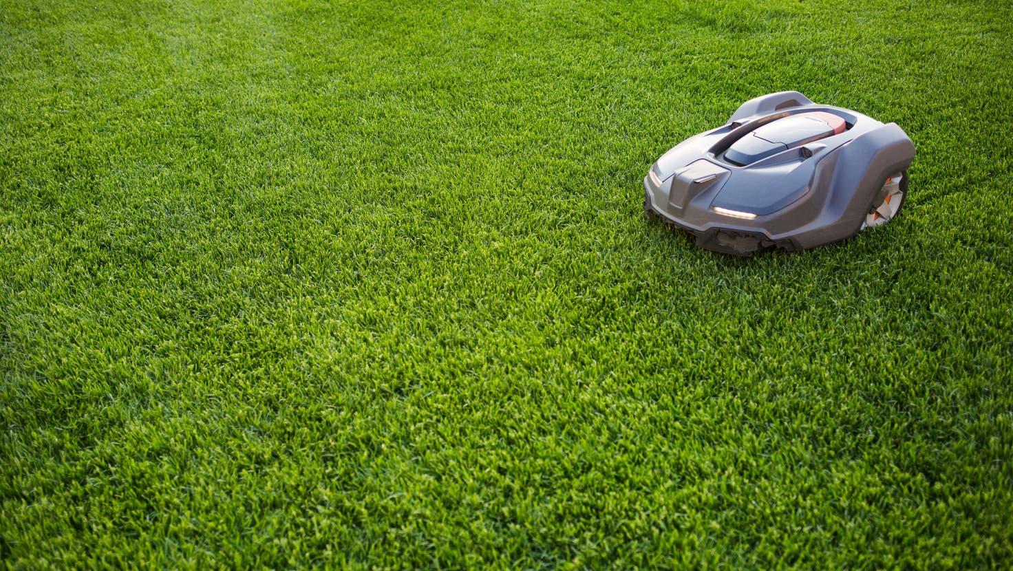Automatische Rasenmäher: praktisch, aber auch sinnvoll? (Bild: Natalia Bodrova / iStockphoto)